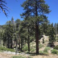 Green Valley Lake Hiking