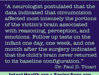 Did an MRI show that circumcision permanently alters the brain?