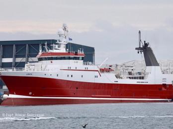 Lokys. (Tripple trawler)