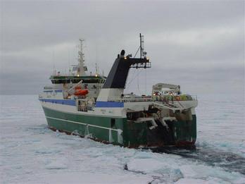 Polar Qassiut ( ex Markus )