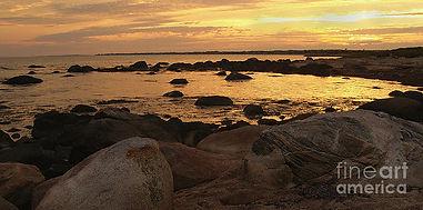 weekapaug-beach-golden-sunset-anna-lisa-