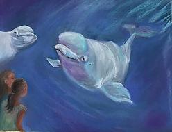 Beluga Watching-Mystic Seaport.jpg