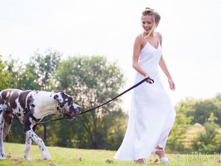4 bruiden en een hond