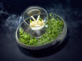 Dish by Kay Baumgardt