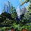 Thumbnail: City View