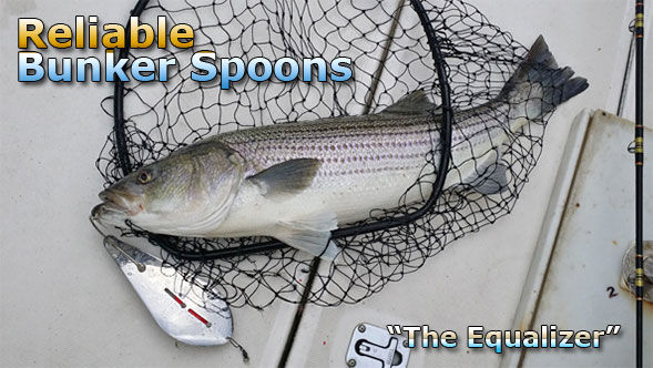 reliable spoon striper in net on boat wi