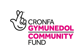 community fund logo .png