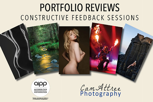 Portfolio Critique Sessions - From $65