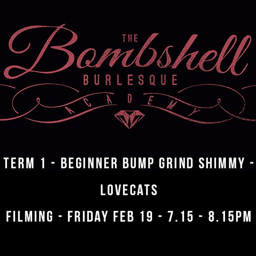 TERM 1 - BEGINNER BUMP GRIND & SHIMMY