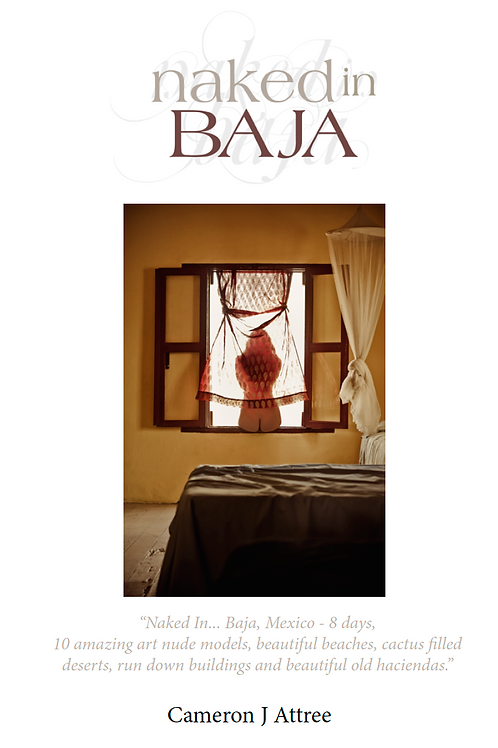 Naked in Baja eBook