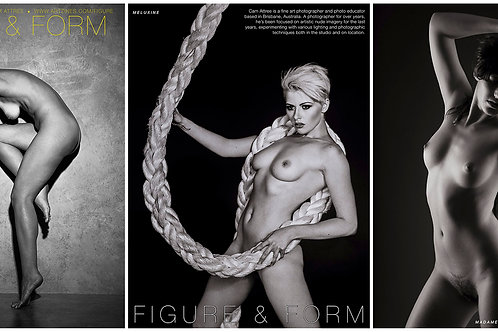 Figure & Form Issues 01-12 Bundle