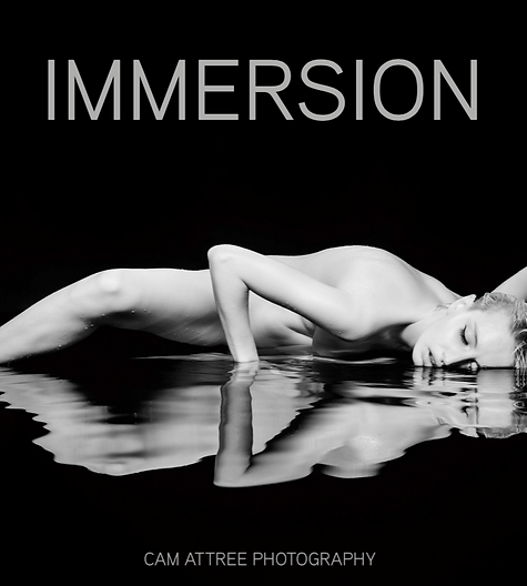 Immersion Coffee Table Book