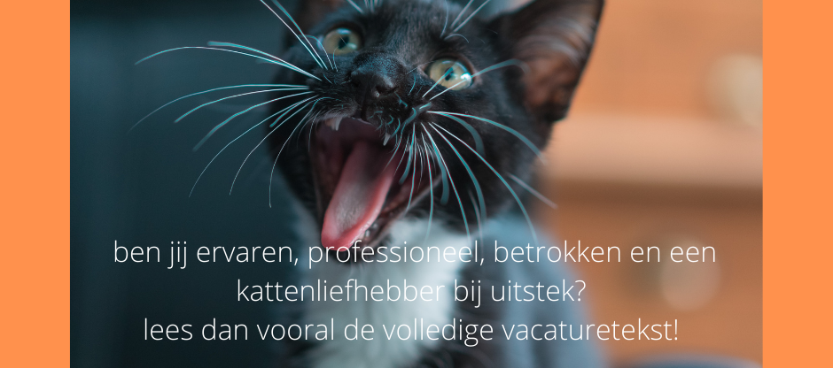 FBvacature.png