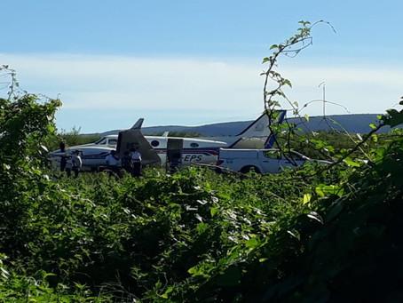 Avião com doses da vacina da Covid-19 bate em jumento
