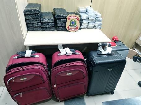 PF prende quatro mulheres e um homem com quase 50 quilos de maconha no aeroporto de Natal
