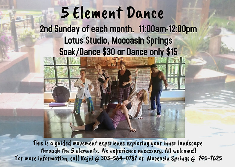 2020_ 5 Element Dance New Design .jpg