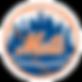 New_York_Mets_logo_logotype.png
