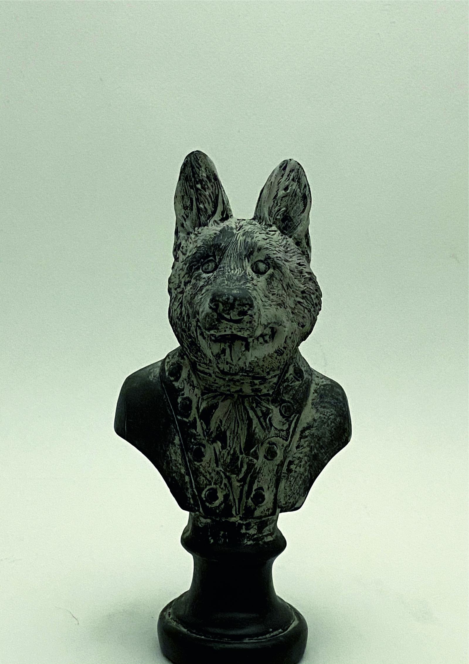 8777_busto perro