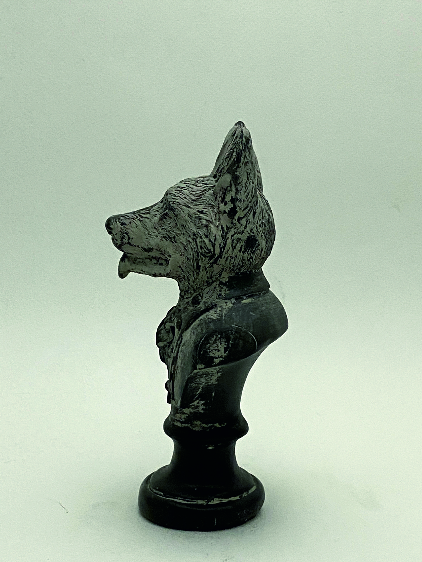 8777_busto perro perfil