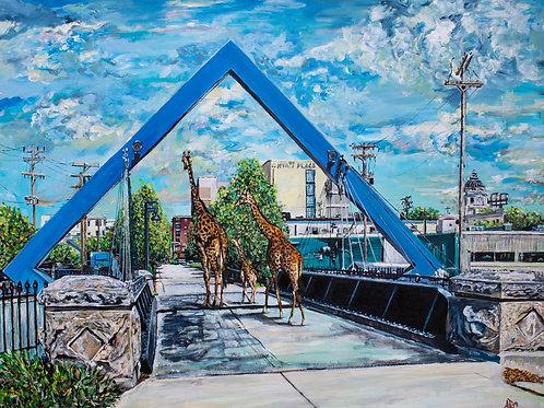 ZOOmington Giraffes
