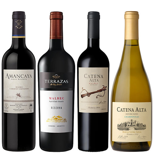 Experience Argentina Wines