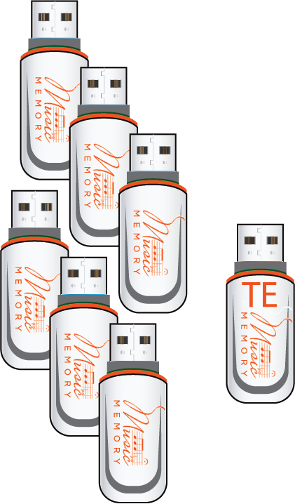 Value Pkg on Flashdrive +6 St. FDs