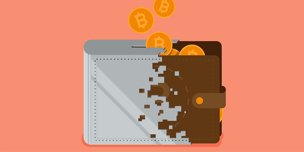 different types of crypto wallet
