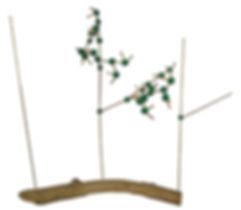 Árbol Fractal