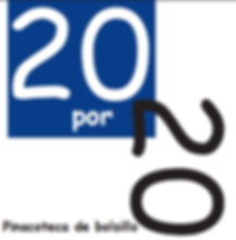 20X20_pw.jpg
