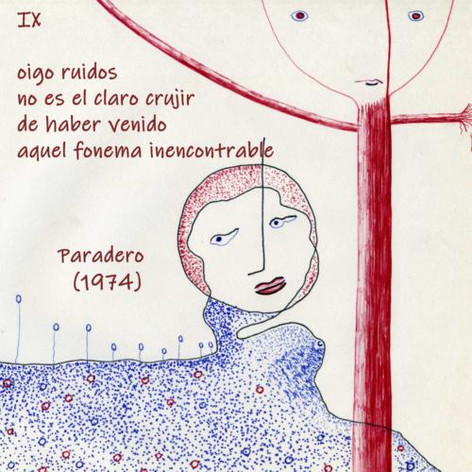 ANDÉS MIGUEL ÁNGEL (8)