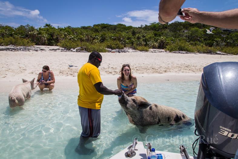 Bahamas 20163749©GéraldineRué.jpg