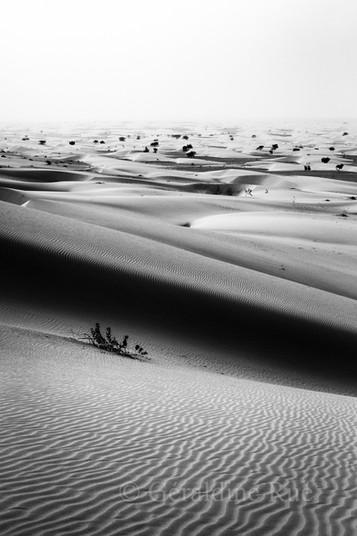 Mauritanie3845© Géraldine Rué.jpg
