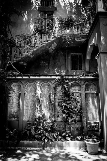 Liban 152530©GéraldineRué.jpg