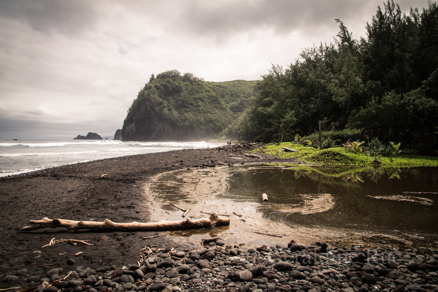 Hawaii4668© Géraldine Rué.jpg