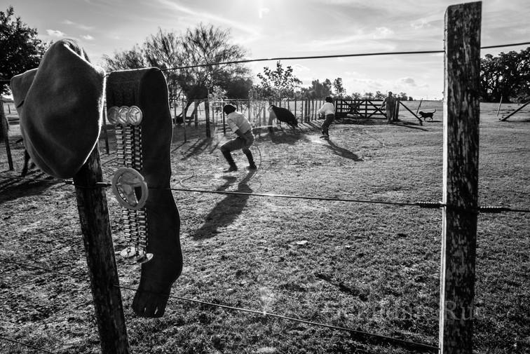 Argentine-gaucho02542© Géraldine Rué.jpg