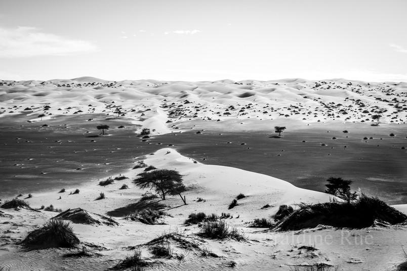 Mauritanie3352© Géraldine Rué.jpg