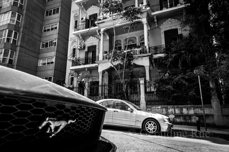 Liban 152499©GéraldineRué.jpg