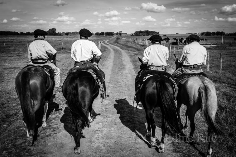 Argentine-gaucho02172© Géraldine Rué.jpg