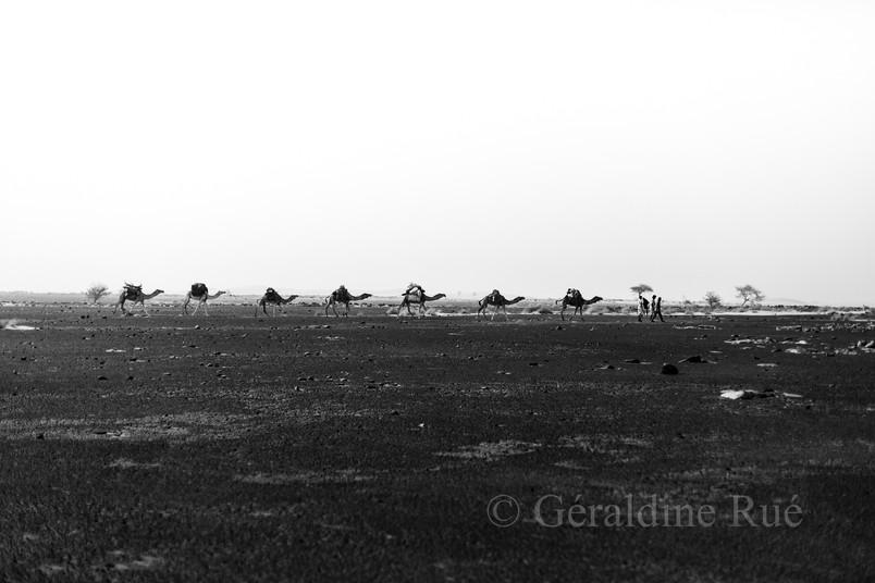 Mauritanie3781© Géraldine Rué.jpg
