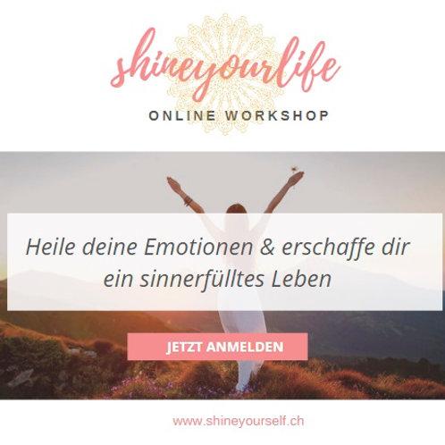 shineyourlife online Workshop
