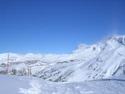 Ski Oz dans la poudreuse