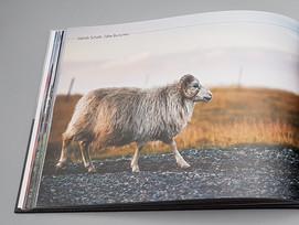 Bildband mit 114 tollen Fotos von Island