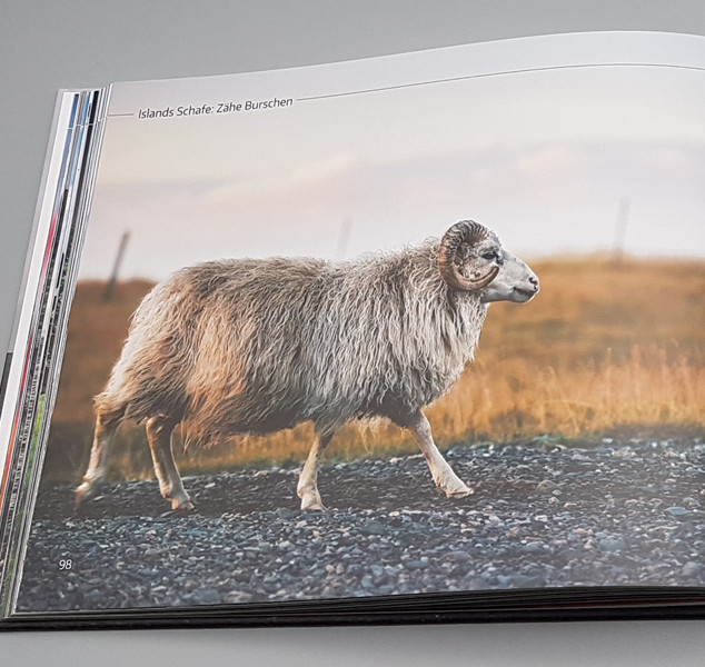 Fotoband Island: 114 Fotos auf 144 Seiten