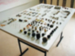 Table de cromosomes.jpg
