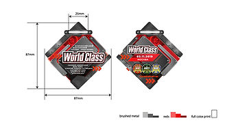 worldclass_tournament_medal_1.jpg