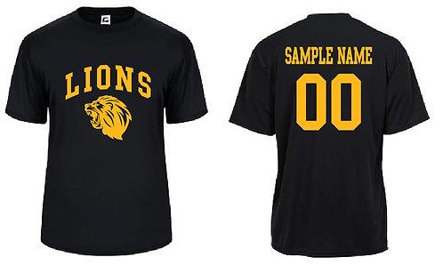 Lions Softball