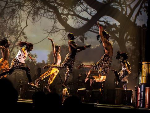 Afrique en Cirque