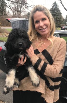 Ohio   Bernedoodles   Poodles   Happy Families