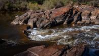 Echidna Trail-46.jpg