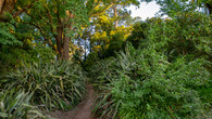 Wombat Hill-41.jpg